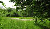 Randonnée Marche COYOLLES - en forêt de Retz_78_les rayons du Rond Capitaine - Photo 119