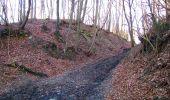 Trail Walk PIERREFONDS - en forêt de Compiègne_24_Tournantes sur le Voliard et sur la Fortelle_chaussée Brunehaut - Photo 103