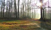 Randonnée A pied VILLERS-COTTERETS - le GR11A  dans la Forêt de Retz  - Photo 28