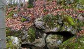 Trail On foot VIEUX-MOULIN - en forêt de Compiègne_23_la Grotte des Ramoneurs_le Mont Berny - Photo 118