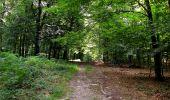 Randonnée Marche HARAMONT - en forêt de Retz_79_08_2019_vers Taillefontaine et Retheuil par les lisières - Photo 100