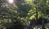 Randonnée Trail NEANT-SUR-YVEL - Autour des étangs à partir du gîte de tante Phonsine - Photo 16