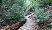 Randonnée Marche Spa - Spa berisienne  - Photo 1
