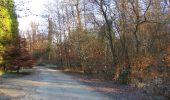 Trail Walk SAINT-JEAN-AUX-BOIS - en forêt de Compiègne_33_12_2019_les Tournantes de l'étang Saint-Jean et des Prés Saint-Jean - Photo 32