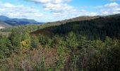 Trail Walk SCHIRMECK - Schirmeck - Photo 5