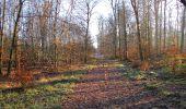 Trail Walk SAINT-JEAN-AUX-BOIS - en forêt de Compiègne_33_12_2019_les Tournantes de l'étang Saint-Jean et des Prés Saint-Jean - Photo 75