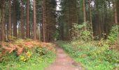 Randonnée A pied VILLERS-COTTERETS - le GR11A  dans la Forêt de Retz  - Photo 125