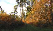 Randonnée Marche SAINT-JEAN-AUX-BOIS - en forêt de Compiègne_19_le Puits d'Antin_les Mares St-Louis_La Muette - Photo 23
