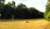 Randonnée Marche LACROIX-SAINT-OUEN - en forêt de Compiègne_35_la Croix Saint-Sauveur_le Ru du Goderu - Photo 73