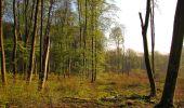 Randonnée Marche LONGPONT - en forêt de Retz_77_Longpont_Puiseux en Retz_AR - Photo 135