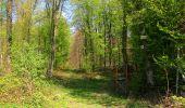 Randonnée Marche LONGPONT - en forêt de Retz_77_Longpont_Puiseux en Retz_AR - Photo 9