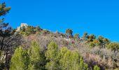 Randonnée Marche PLAN-D'AUPS-SAINTE-BAUME - source Huveaune, chemin des rois - Photo 17