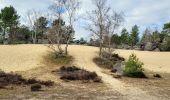 Randonnée Marche NOISY-SUR-ECOLE - Boucle les trois pignons Fontainebleau - Photo 3