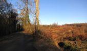 Trail Walk RETHEUIL - en forêt de Retz_76_dans les forêts de Retz et de Compiègne - Photo 31