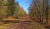 Trail Walk RETHEUIL - en forêt de Retz_76_dans les forêts de Retz et de Compiègne - Photo 138