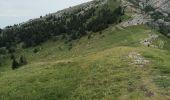 Randonnée Marche LANS-EN-VERCORS - Pic Saint-Michel et col d'Arc Vercors - Photo 5