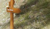 Randonnée Marche SAINT-ETIENNE-DE-TINEE - col d'anelle - Photo 4