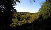 Trail Walk DAMPLEUX - en forêt de Retz_80_sur la Route Tortue et la Route Droite - Photo 246