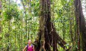 Randonnée Marche Maison de la Forêt - Trace du bras David - Photo 5