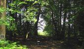 Randonnée Marche HARAMONT - en forêt de Retz_79_08_2019_vers Taillefontaine et Retheuil par les lisières - Photo 105