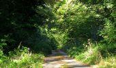 Trail Walk DAMPLEUX - en forêt de Retz_80_sur la Route Tortue et la Route Droite - Photo 155