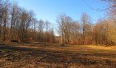 Trail Walk PIERREFONDS - en forêt de Compiègne_24_Tournantes sur le Voliard et sur la Fortelle_chaussée Brunehaut - Photo 89