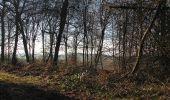 Trail Walk RETHEUIL - en forêt de Retz_76_dans les forêts de Retz et de Compiègne - Photo 37