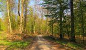 Randonnée Marche LONGPONT - en forêt de Retz_77_Longpont_Puiseux en Retz_AR - Photo 104