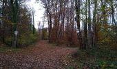 Trail Walk SENTHEIM - Sentheimtour Covid série 2 bis - Photo 3