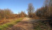 Trail Walk RETHEUIL - en forêt de Retz_76_dans les forêts de Retz et de Compiègne - Photo 134