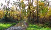 Randonnée Marche SAINT-JEAN-AUX-BOIS - en forêt de Compiègne_19_le Puits d'Antin_les Mares St-Louis_La Muette - Photo 53