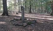 Trail Walk Profondeville - Le sentier géologique et pédologique de Profondeville  - Photo 5