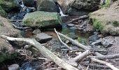 Trail Walk METZERAL - Steinabruck - Le Hohneck et ses 3 lacs Fischboedle, Altenweiher et Schiessrothried - Photo 10