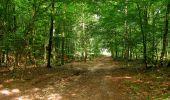 Randonnée Marche HARAMONT - en forêt de Retz_79_08_2019_vers Taillefontaine et Retheuil par les lisières - Photo 91