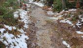 Trail Walk Sainte-Ode - rando lavacherie 29/12/2020 - Photo 3