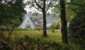 Randonnée Marche LOCMELAR - ballade 270719 - Photo 12