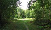 Randonnée Marche LONGPONT - en foret de Retz_ 41_Longpont_Vertes Feuilles_AR - Photo 147