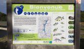 Randonnée Marche PLOUFRAGAN - Bretagne - La Méaugon - Boucle autour du Gouët - Photo 2