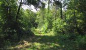 Randonnée Marche LACROIX-SAINT-OUEN - en forêt de Compiègne_35_la Croix Saint-Sauveur_le Ru du Goderu - Photo 12