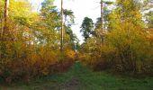 Randonnée Marche SAINT-JEAN-AUX-BOIS - en forêt de Compiègne_19_le Puits d'Antin_les Mares St-Louis_La Muette - Photo 20