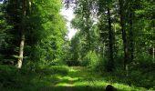 Randonnée Marche HARAMONT - en forêt de Retz_79_08_2019_vers Taillefontaine et Retheuil par les lisières - Photo 64