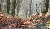 Randonnée A pied VILLERS-COTTERETS - le GR11A  dans la Forêt de Retz  - Photo 104