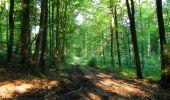 Randonnée Marche HARAMONT - en forêt de Retz_79_08_2019_vers Taillefontaine et Retheuil par les lisières - Photo 5