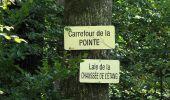 Trail Walk DAMPLEUX - en forêt de Retz_80_sur la Route Tortue et la Route Droite - Photo 303