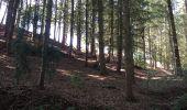 Randonnée Marche PLOUFRAGAN - Bretagne - La Méaugon - Boucle autour du Gouët - Photo 15
