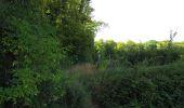 Randonnée Marche LACROIX-SAINT-OUEN - en forêt de Compiègne_35_la Croix Saint-Sauveur_le Ru du Goderu - Photo 44