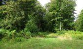 Randonnée Marche LONGPONT - en foret de Retz_ 41_Longpont_Vertes Feuilles_AR - Photo 141