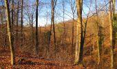 Trail Walk PIERREFONDS - en forêt de Compiègne_24_Tournantes sur le Voliard et sur la Fortelle_chaussée Brunehaut - Photo 42