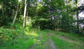 Randonnée Marche HARAMONT - en forêt de Retz_79_08_2019_vers Taillefontaine et Retheuil par les lisières - Photo 24