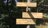 Trail Walk SARZEAU - 2019-08-10 GR34 GOLFE DU MORBIHAN CÔTIER  AUTOUR  DE SARZEAU - Photo 14